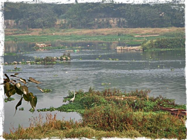 Floden från Burning ghat