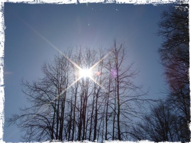 130405 Sol