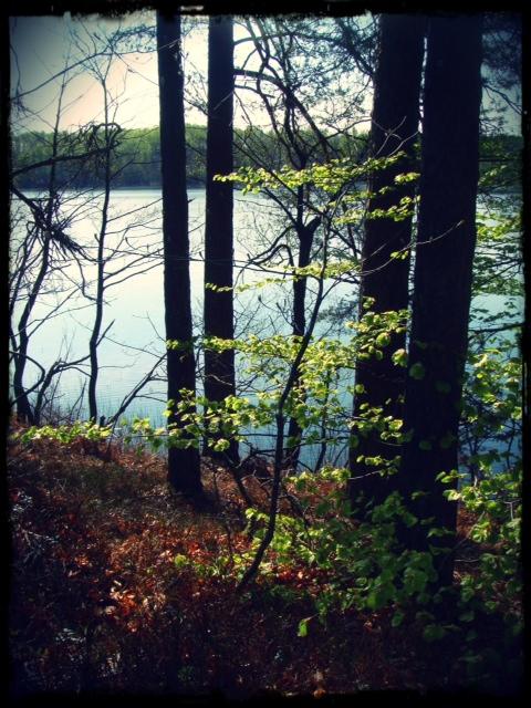 Hannabadssjön i vårskrud