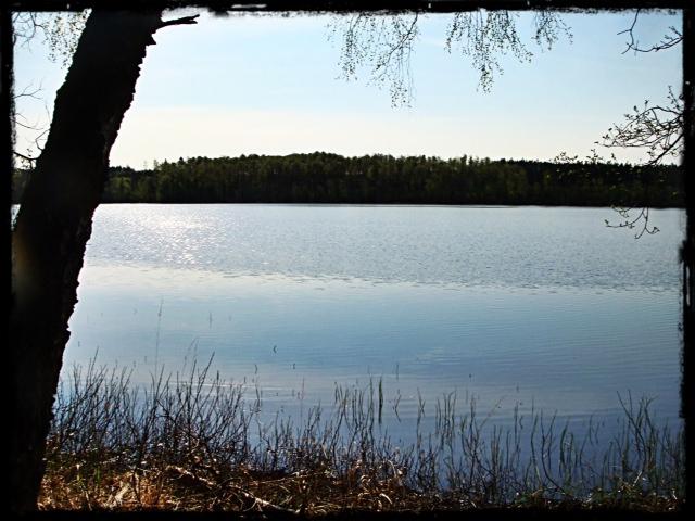 Vårmorgon vid Hannabadssjön