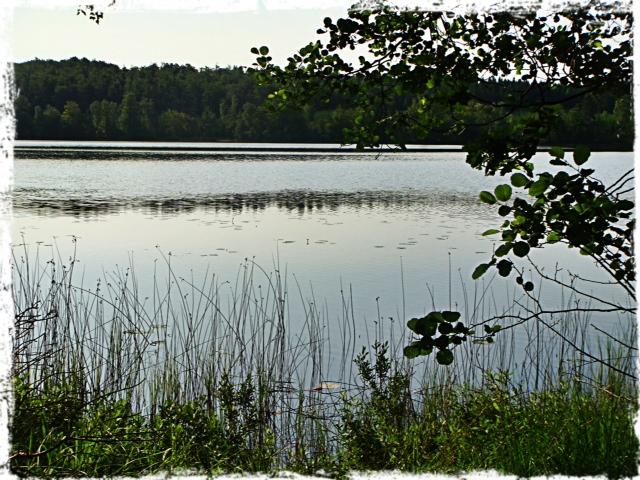 Båda bilderna visar vatten. Den ena en sjö. Den andra havet. Var och en med sina egna givna förutsättningar. Vattnet i sjön blir inte salt hur mycket den än försöker.