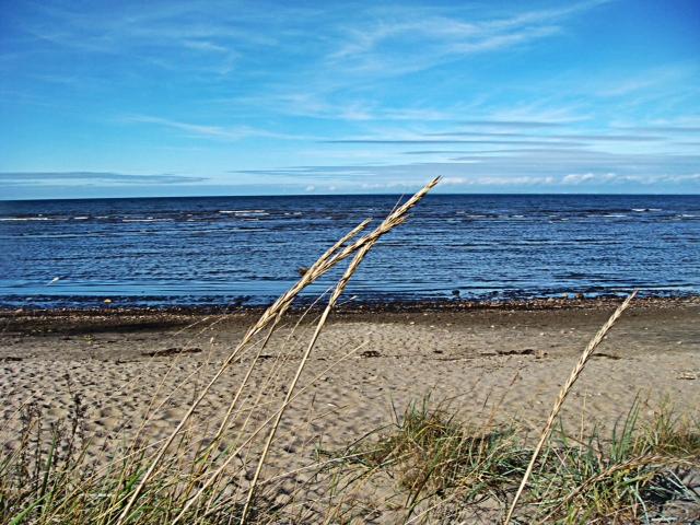 Strand i Båstad