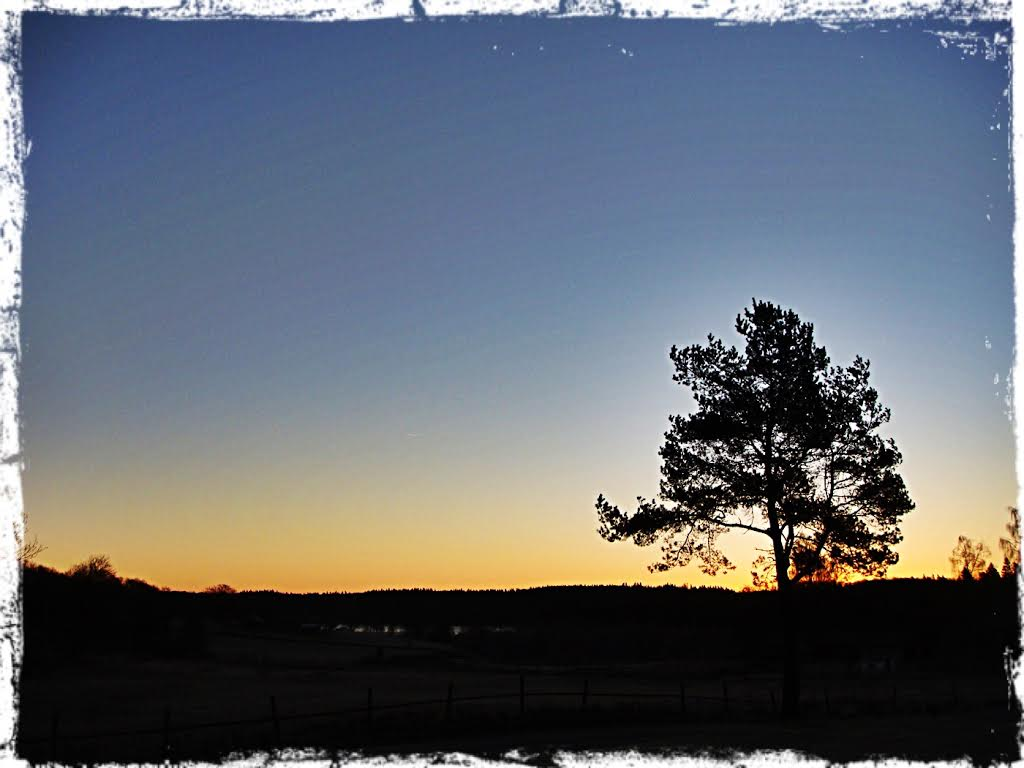 Soluppgång över sjön, 1