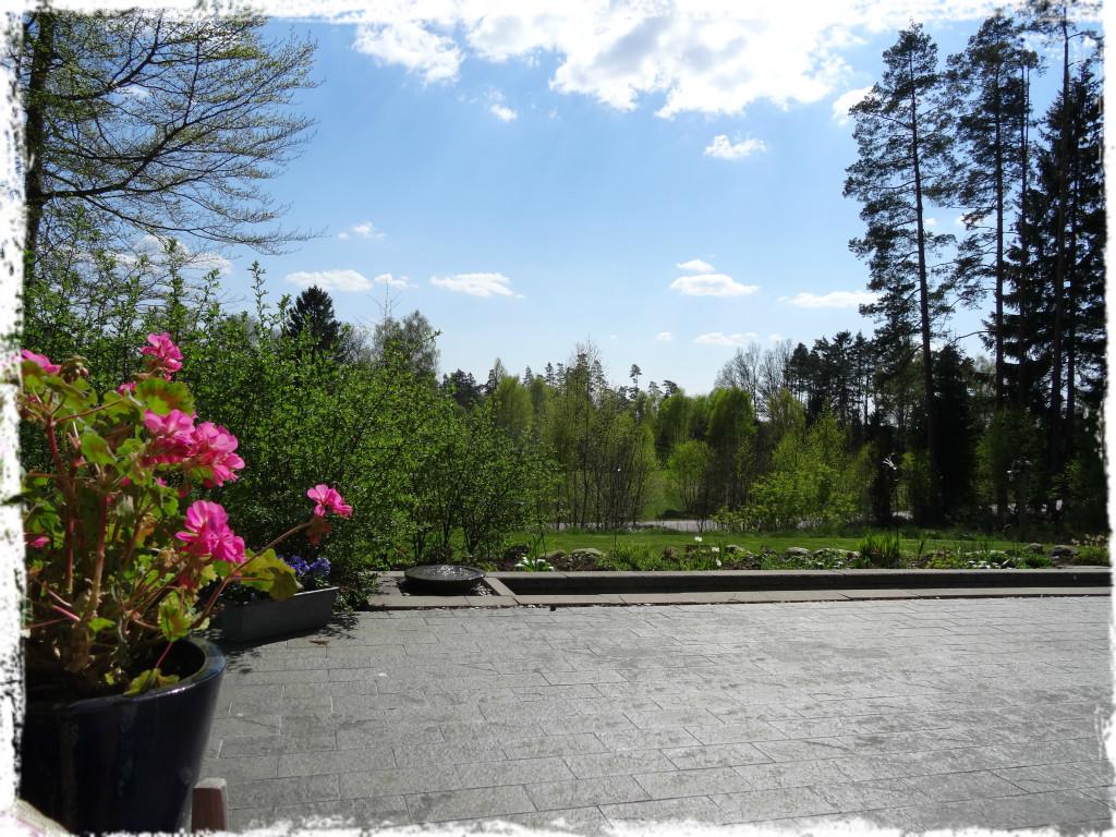 Utsikt över trädgården 27 april