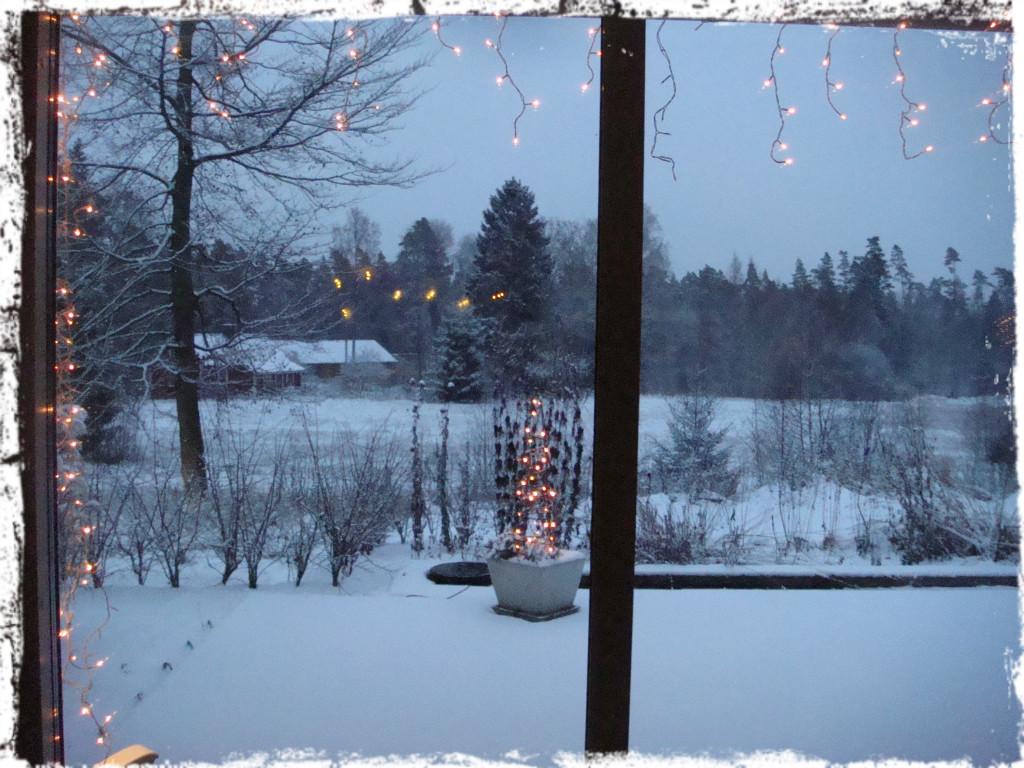 Vintervy över trädgården.