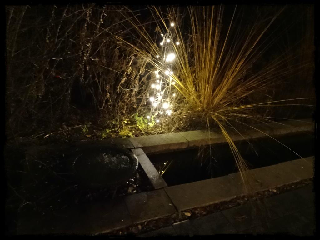 Det lyser i trädgården