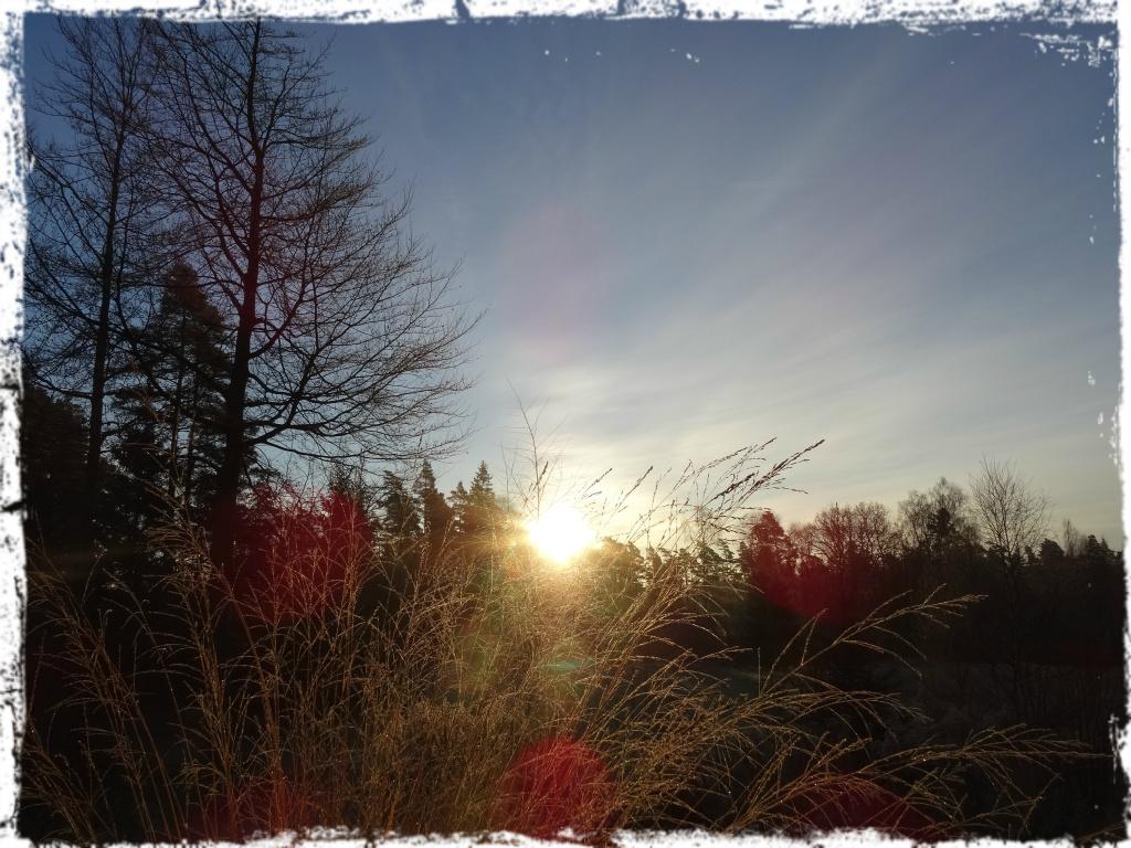 Sol i november, 141122