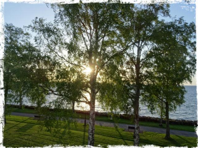 Utsikt från mitt rum på Birgittasystrarnas Gästhem.