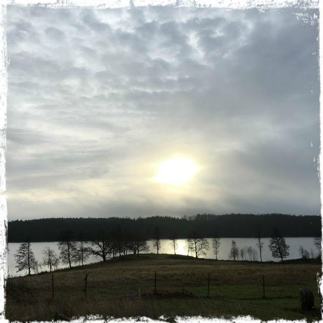 Morgonens promenad. Denna vackra värld - också.