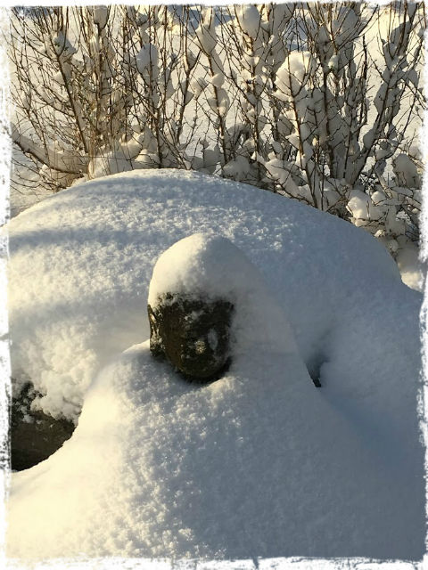 Buddha i snö 2 151122 L