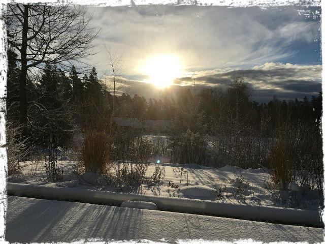 Vintermorgon 2 b 151122 L